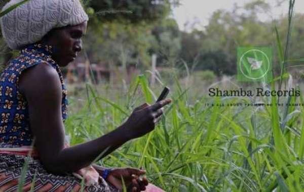 Au Kenya, Shamba Records, utilise la blockchain et l'IA pour améliorer les processus agricoles